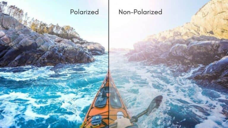 Difference Between Polarized and NonPolarized Sunglasses