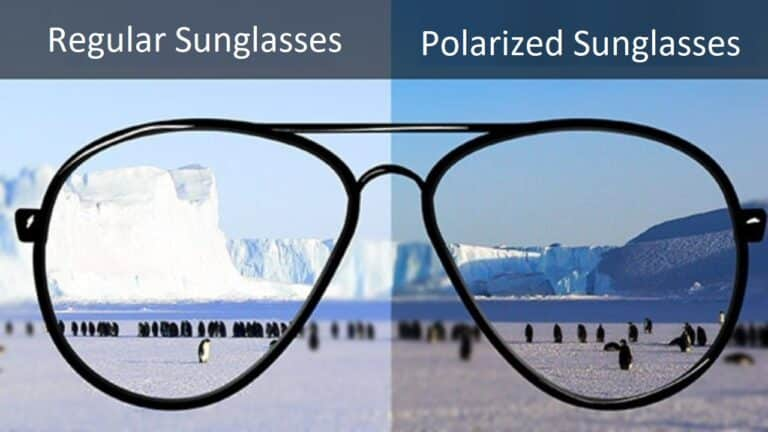 Polarized Sunglasses vs Regular Sunglasses: Which Is Better & Why